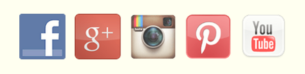 socialmediawidge5